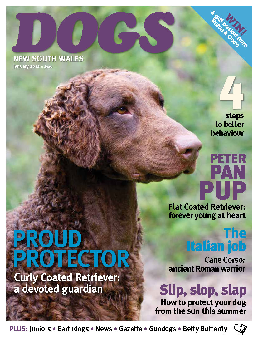 DOGS NSW magazine January 2012 cover